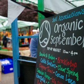 SOIL organic food market