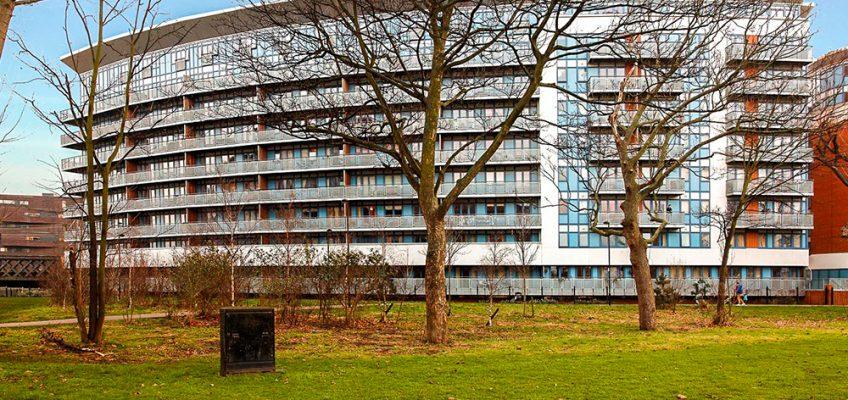 Leamore Court Meath Garden housing development