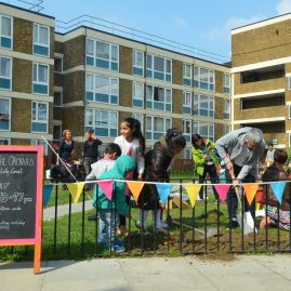 Butley Court Community Orchard launch event