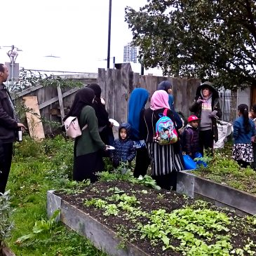 The Orchard Project branches out to Abbey Gardens